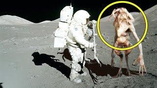 Her Astronotun Saklamaya Çalıştığı Şey Bu! Silinmeden İzleyin.