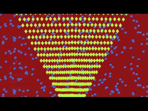 Ilusión óptica del año II Premio