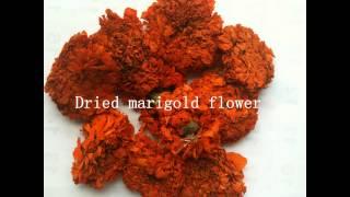 marigold oleoresin from manufacturer xi'an hua rui China