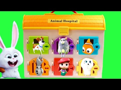 Learn Colors for Children Video with The Secret Life of Pets Animal Hospital & Paw Patrol Toys