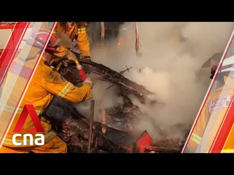 Australian fires: Volunteers around the world knit koala mittens and kangaroo pouches
