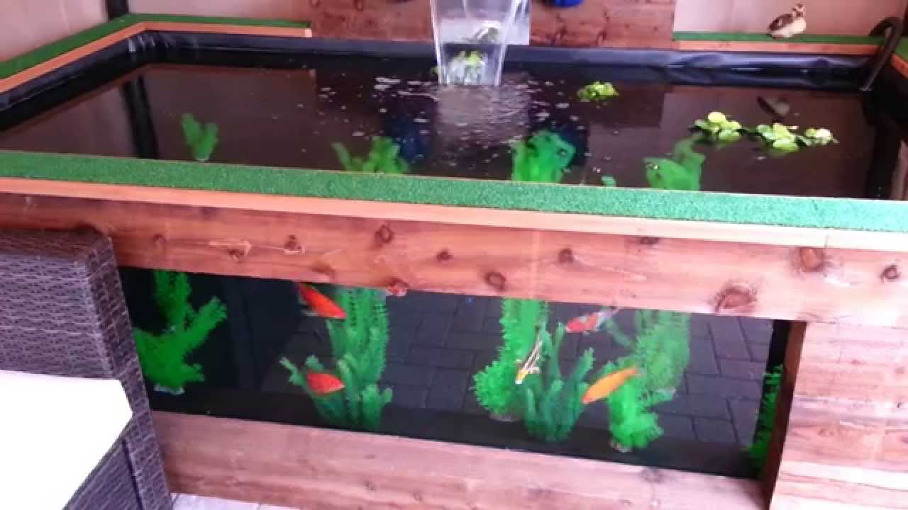 Raised pond with viewing window part 1 of 3 youtube for Koi pond window
