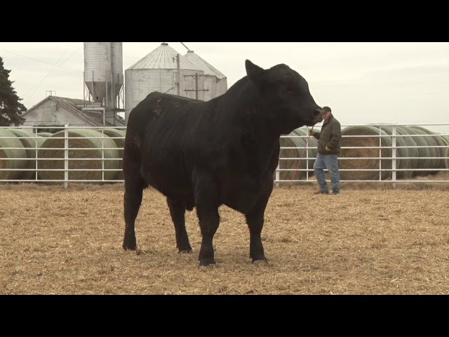 Express Ranches Lot 137