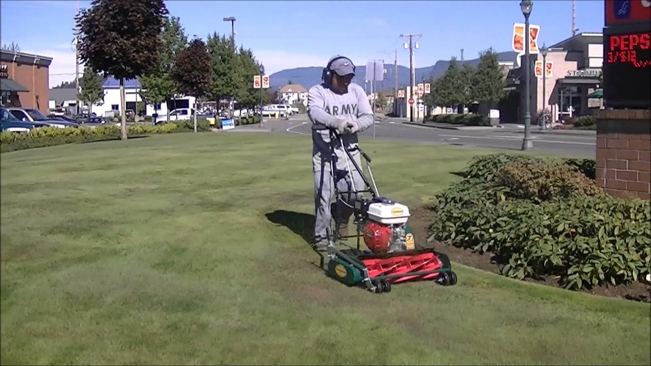 New California Trimmer Reel Mower Hd
