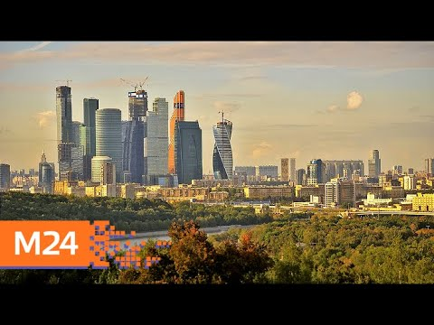 Как город влияет на экологическую сознательность москвичей - Москва 24