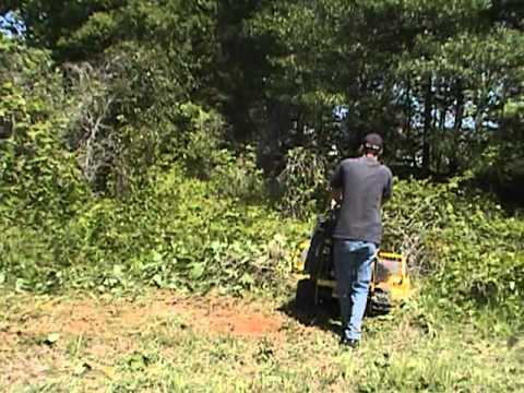 Clearing Brush And Vines Youtube
