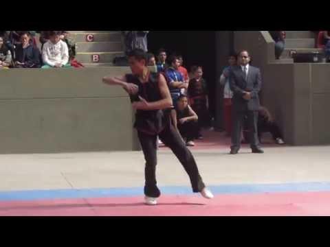 Wushu Warriors 002