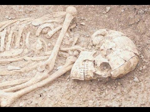 (2017! Doku) Der Knochenjäger - Wissenschaft des Todes (HD)