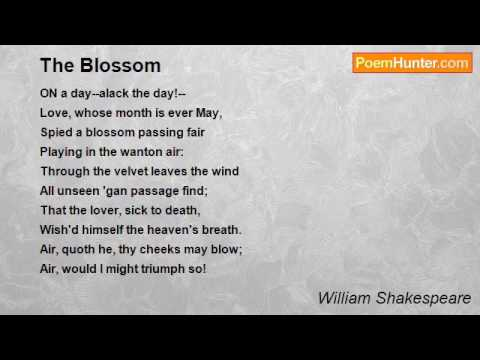 The Blossom Poem By William Shakespeare Poem Hunter Youtube Poem hunter command line interface. the blossom poem by william shakespeare
