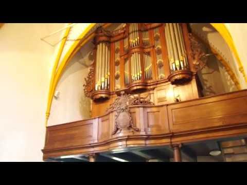 Improvisatie De Vogels in de bomen - gezang 49 LdK / Lied 979 Nieuwe Liedboek