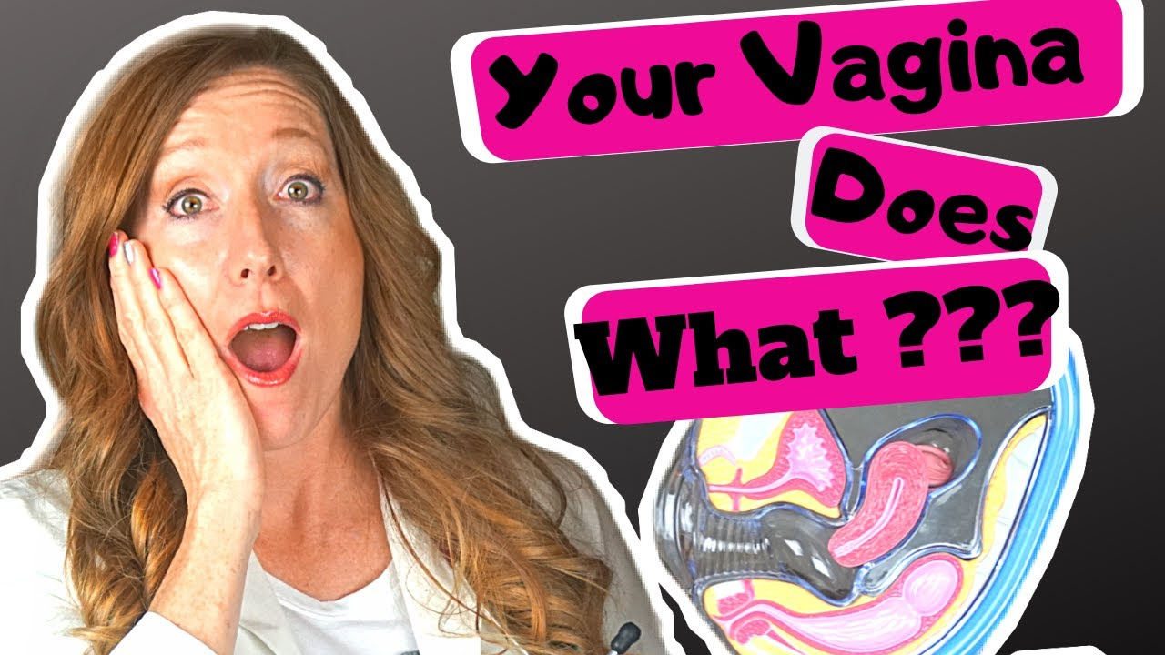 About the vagina weird facts Vagina Facts