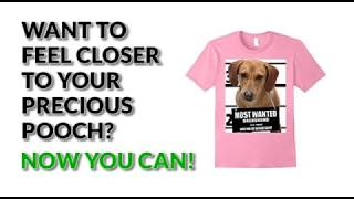 Most Wanted Dachshund Cute Funny T shirt - Men's, Women's, Kid's - White, Heather Grey, Pink