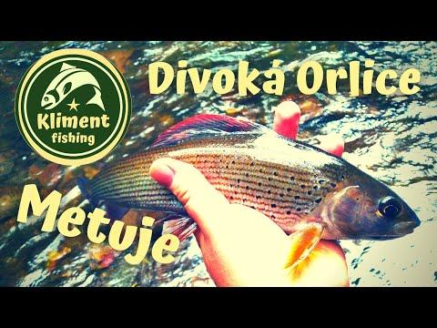 Divoká Orlice a Metuje, krásné řeky východních Čech.