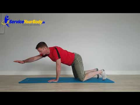AC Joint Separation Rehab Exercises