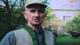 Stajnia Moszna - tr Stanisław Dzięcina - Służewiec, 1995r