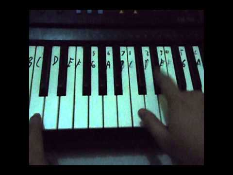 Piano lesson Lemon Tree by Fools Garden Part 1