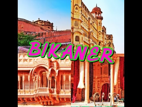 Bikaner || Junagarh Fort || Karni Mata Rat Temple || Rajasthan Tour || Vlog || Part 1 ||