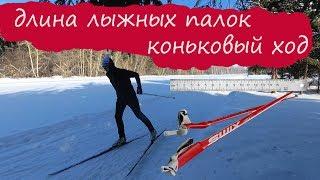 Длина лыжных палок. Коньковый ход урок.