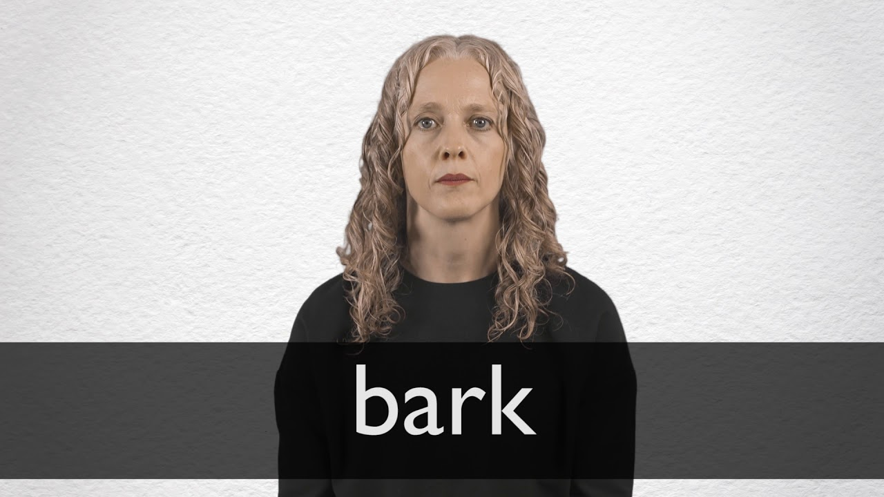 Bark definition and meaning | Collins English Dictionary