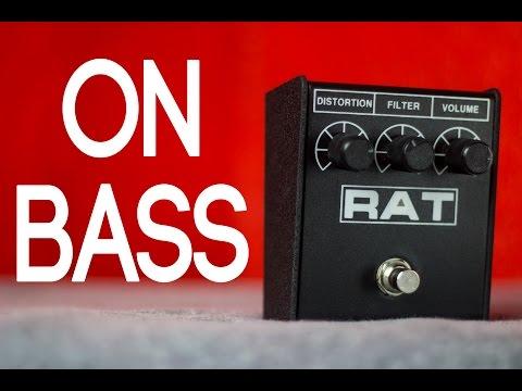 ProCo Rat2 [Bass Demo]