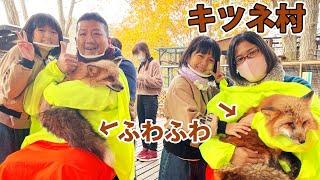 キツネ村でふわっふわなキツネを抱っこ♡餌やりでキツネが喧嘩><お出掛け♪himawari-CH