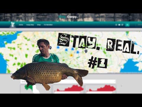Stay. Real. #1 | Was geht? | Neue Webseite von CarpHotel | Karpfenangeln