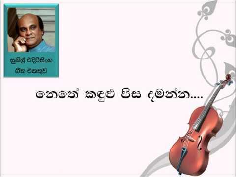 Nethe Kadulu Pisa Damanna - Sunil Edirisinghe (Sinhala Mp3 Songs)