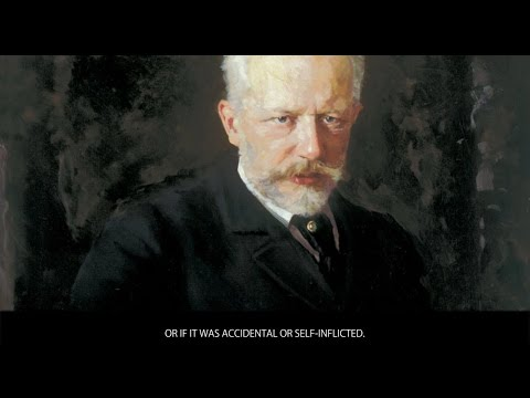 Tchaikovsky -  Bios of famous classical music composers  - Wiki Videos by Kinedio