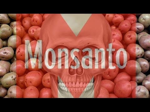 HAWAII BANS GMO FOOD & CROPS - Anti GMO / Monsanto Spreading Across The World
