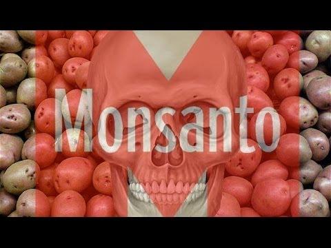 HAWAII BANS GMO FOOD & CROPS - Anti GMO / Monsanto Spreading Across The World