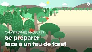 Apprendre à se préparer face à un feu de forêt | Catastrophe naturelle