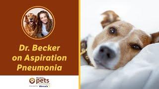 Dr. Becker on Aspiration Pneumonia