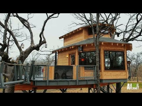 Man Cave Treehouse Reveal Treehouse Masters Youtube