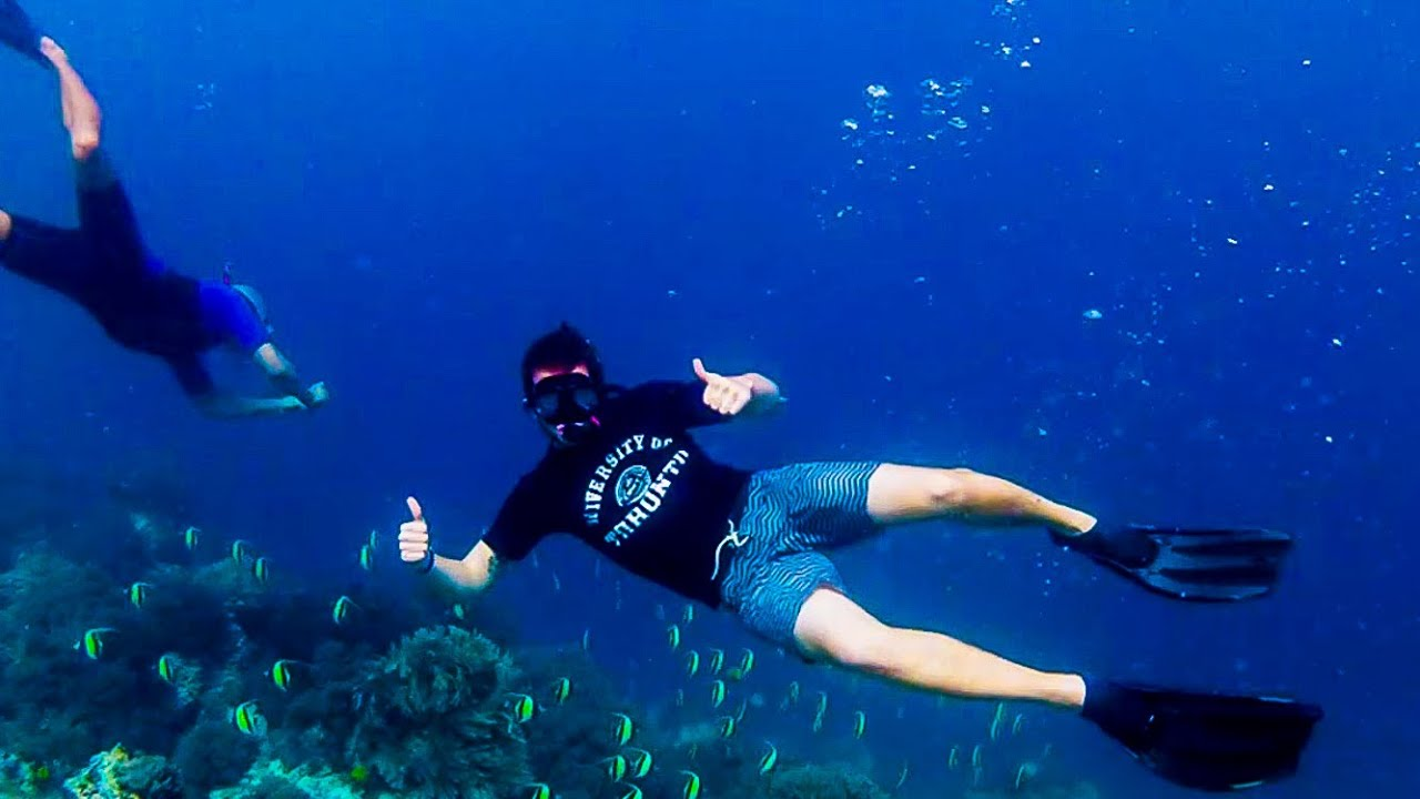 Amazing Zanzibar Tanzania. Snorkeling tour. - YouTube