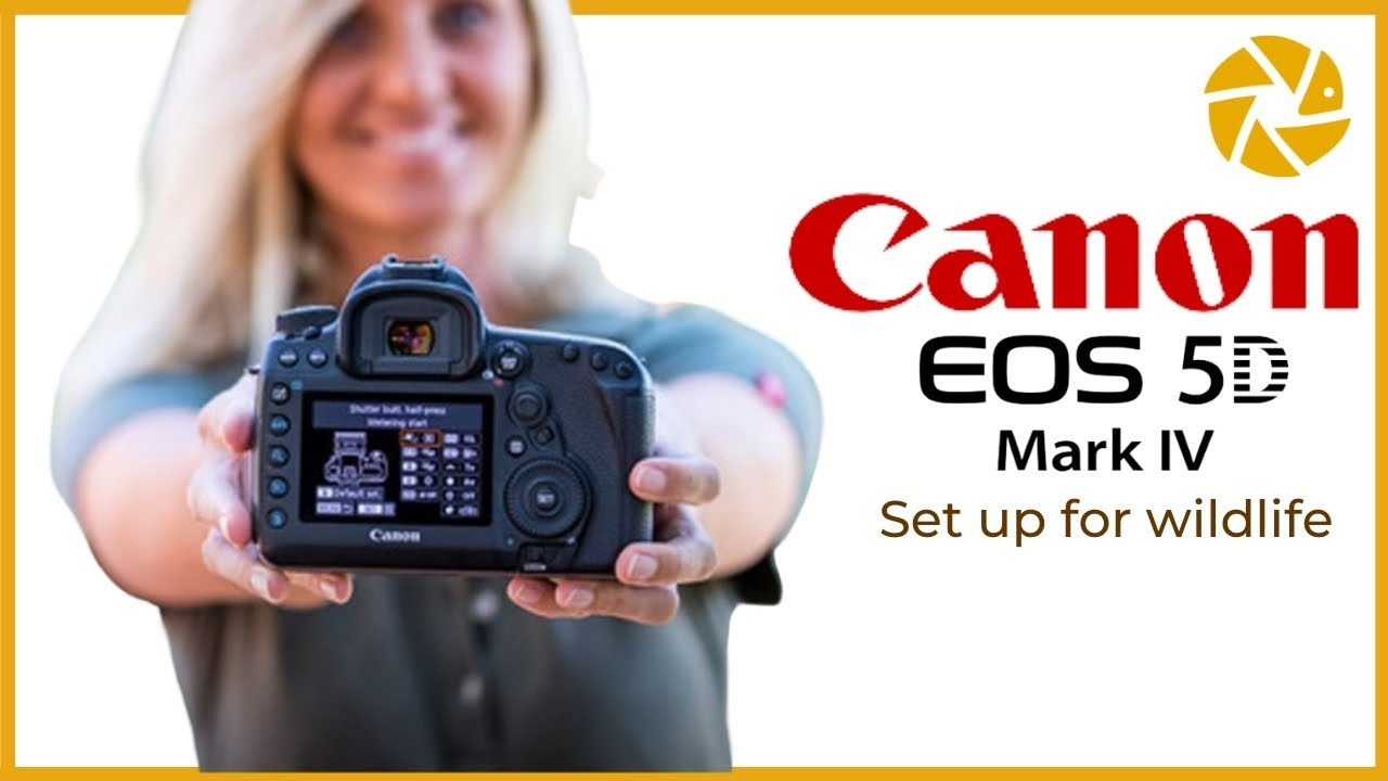 Canon 5d Mark IV Settings For Wildlife Photography