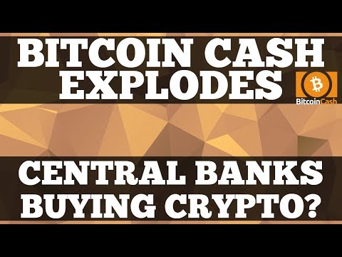 Crypto News | Bitcoin Cash Massive High As Bitcoin Pulls Back. Central Banks To Hold Crypto?