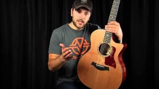 Cedar - Acoustic Guitar Tonewood Guide