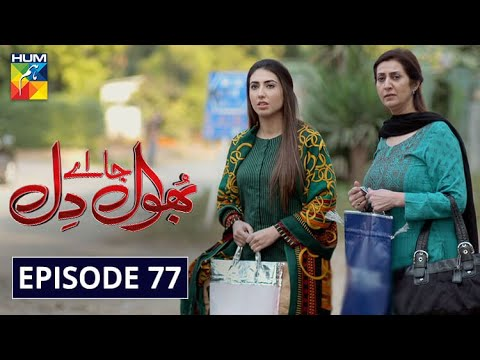 Download Bhool Jaa Ay Dil Episode 77 HUM TV Drama 2 March 2021