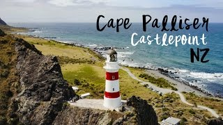 Coastal New Zealand (DJI) | Castlepoint x Putangirua Pinnacles x Cape Palliser