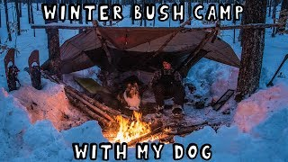 Winter Bush Camp with My Dog for 2 Nights