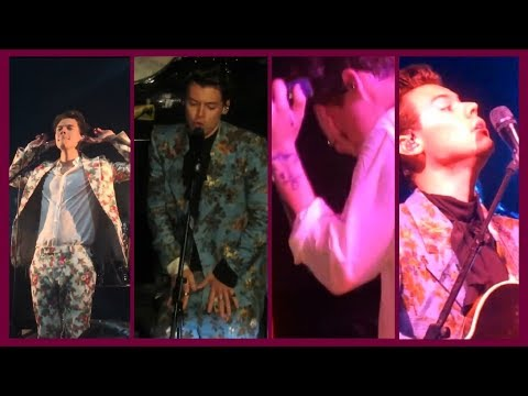 Harry Styles - Hot, cheeky and funny tour moments |PART 1|