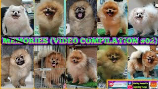 MEMORIES (POM VIDEO COMPILATION #02)