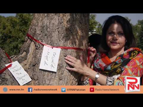 Trees Cutting at Islamabad's Embassy Road | Radio News Network | Shamshad Afridi