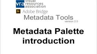 VRA Bridge Metadata Palette: Introduction