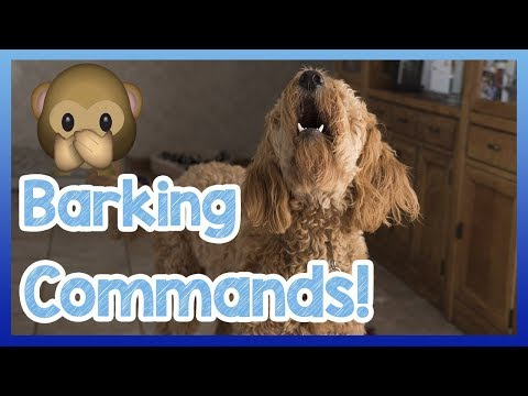 Teach Your Dog to Bark and Stop Barking on Command! How to Train Your Dog to Speak and Be Quiet!