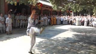 Shaolin Animal Forms Performance @ Shaolin Temple