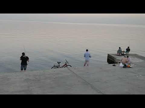 Все про рыбалку в одессе