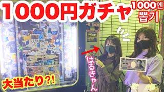 YouTuber=1000円ガチャ 1000円ガチャ=YouTuber というくらいの人気企画!!! 今回も、石田晴香ちゃんと一緒に! 1000円ガチャに挑戦したら、とんでもないことに ...