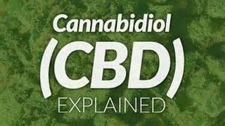 What is CBD Hemp Oil with Coconut Oil