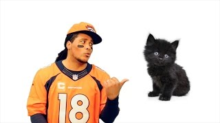 Here Kitty Kitty (Broncos vs Panthers DISS SONG)